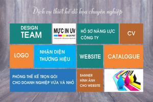 Thiết kế logo, nhãn hiệu, catelogue, prochure